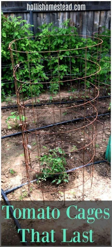 DIY tomato cages that last