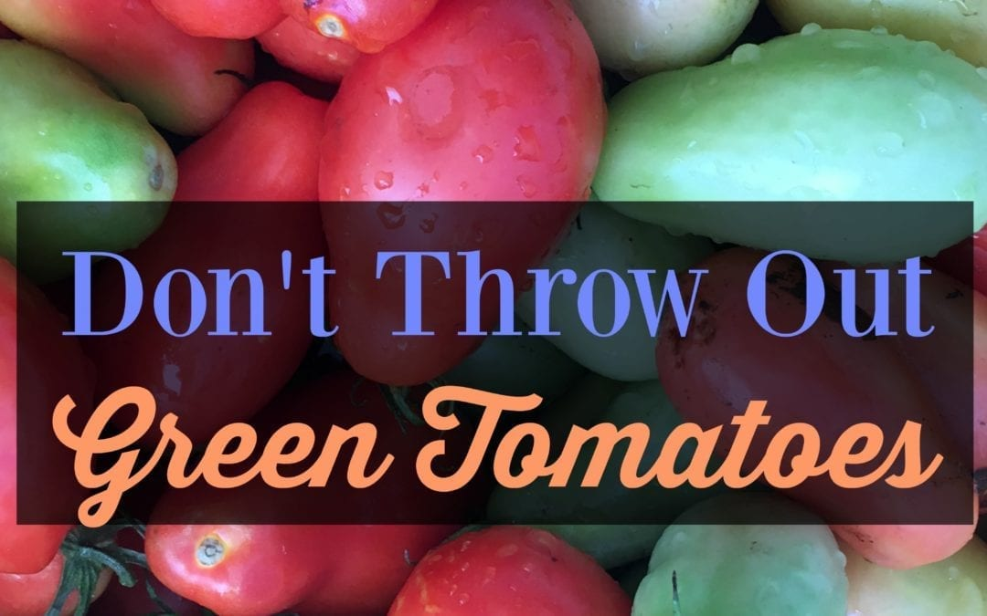 Don't Throw Away Your Green Tomatoes