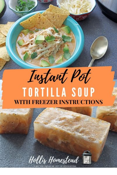 Instant Pot Chicken tortilla Sour Recipe pinterest image with soup in a teal bowl and frozen cubes
