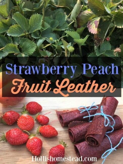 Strawberry peach fruit leather pin image