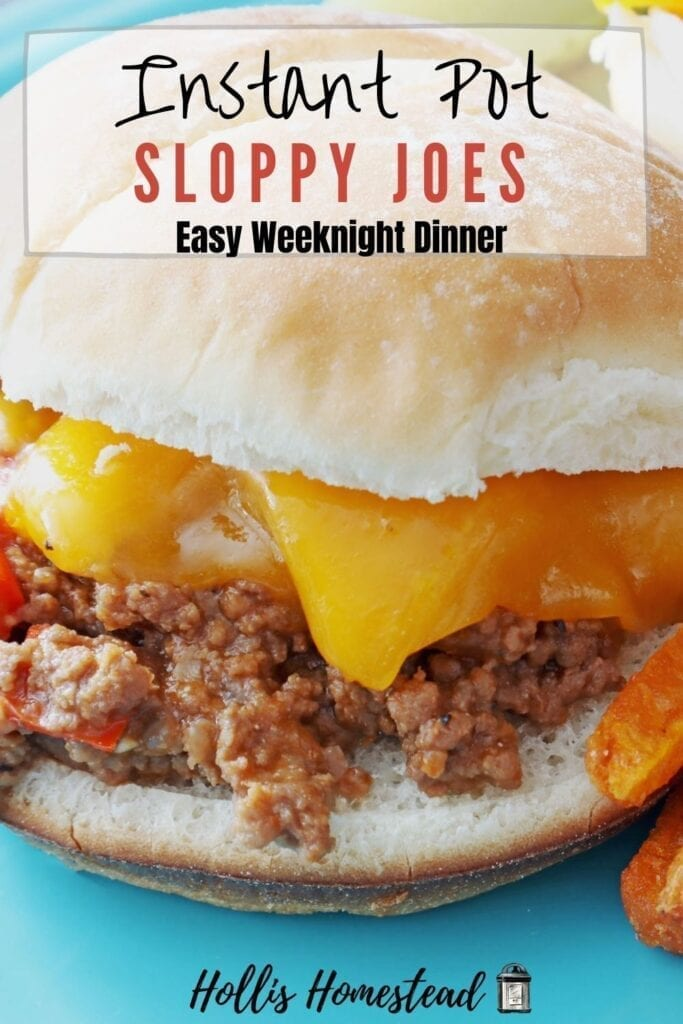 Instant Pot Sloppy Joes on a bun with melted cheese on a teal plate Recipe Pinterest Pin